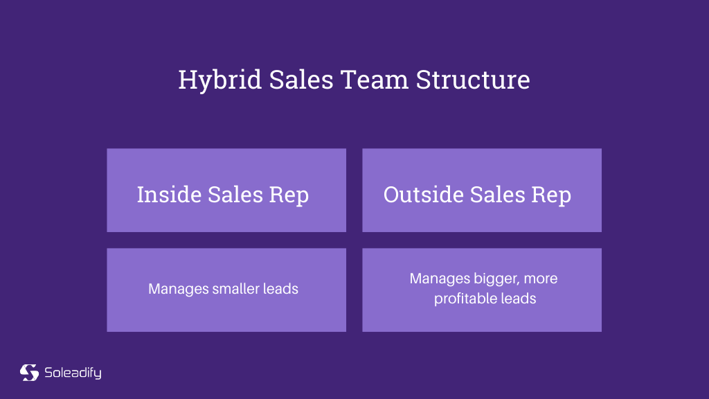 hybrid sales team structure